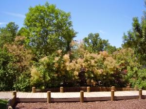 Parco delle Acque Minerali Imola - Strutture